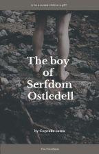 The boy of Serfdom Ostledell by Cupcake-sama