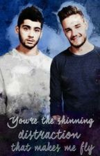 You're the shining distraction that makes me fly | traducido. by Strongxziam