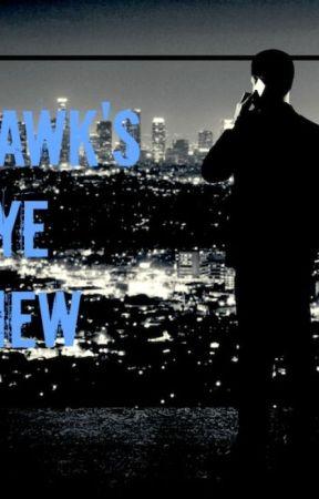 Hawk's Eye View by truelovewaits25