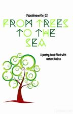 From Trees to the Sea by peacelovewrite_02