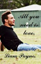 All you need is love. (Liam Payne) by walktothesky_