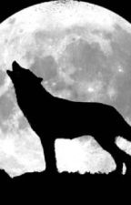 I'm In Love With A Werewolf                  (Remus Lupin Love Story) by WHICHWEASLEY