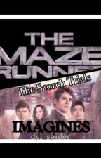 The Maze Runner/The Scorch Trials imagines by dyl_spider
