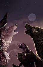 Werewolf Rp by Fckppllivelife