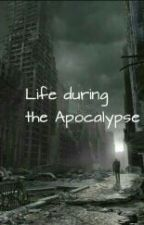 Life during the Apocalypse by amber2979
