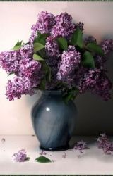 Wilted Lilacs by zeusfireair