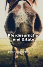Pferdesprüche/Zitate by -Blue-Unicorn