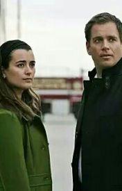 NCIS Tony e Ziva incontri