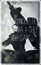 [Réecriture ] Chronique de Teyanna : Chef De Gang by _CessPrin212_