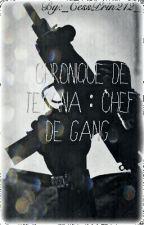 [Réecriture ] Chronique de Teyanna : Chef De Gang by _CessPrin212_