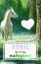 Konie- moim nałogiem by Myszata65
