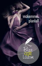 Bize Aşk Lazım (Mükemmel Planlar Serisi 1. Kitap) by romantikkomedya