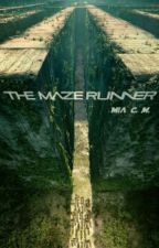 The Maze Runner - Grupo B by Isacg00
