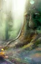 """""""ENCHANTED FOREST"""" by SenoritaMalik"""