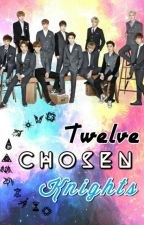 Twelve Chosen Knights [OT12] by Helen_Fighter_Hnin