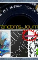 Brandon's Journal by Lizzie215