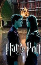 Harry Potter and his Auror Life by Sushildurai