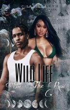 Wild Life (On The Run) by biebeyhive