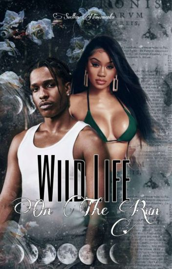 Wild Life (On The Run)