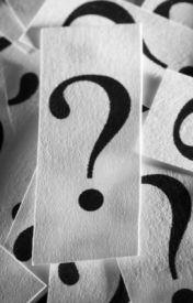 The question by GabbyTurner8