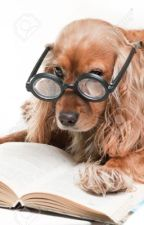 A Dogs Diary by _MemeInhaler_