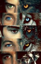 Who knew one direction were Were-wolves by 16maddee