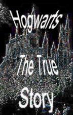 Hogwarts The True Story by HarryPotterGeeks73