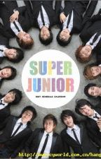 Super Junior Song Lyrics by ibetyouknow