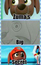 Zuma's Big Secret by AlexSantiagoShadex