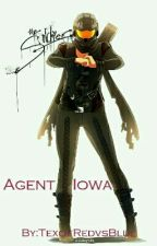 Agent Iowa (Red vs Blue fanfic) by MpregExpertTex
