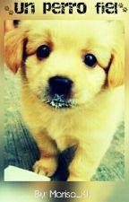 Un perro fiel by Marisa_KH