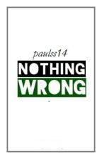 Nothing wrong, paulss14 by paulss14