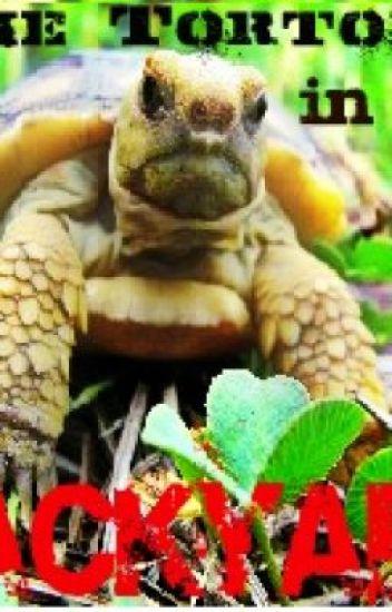 The Tortoise In My Backyard