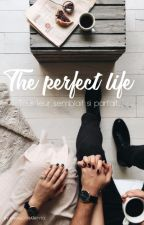 The Perfect Life (H.S) by MargotHarry93