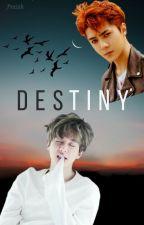 Destiny~ by prxioh