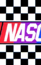 NASCAR Imagines! :D by racing_fangirl