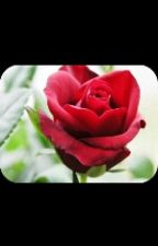 La rosa inmortal by Serranojulianys