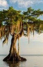 עץ החיים by jeromkz
