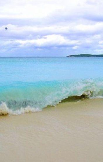 A Life at the Beach