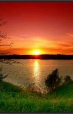 Солнце встает над селом Дзауга... by fastfud3