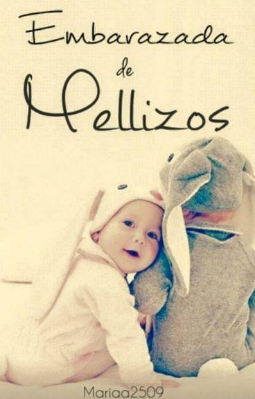 Embarazada de Mellizos ©