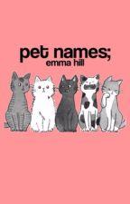 pet names by guiltyones