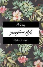 It's my perfect life // Ashton Irwin by Ashton_Irwin67