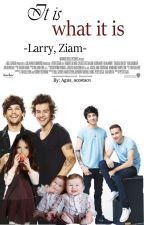 It is what it is -Larry, Ziam- by GenuineReader_