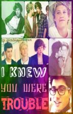 I Knew You Were Trouble - Narry/Ziall AU fanfic *COMPLETED* by MrsNiallHoran