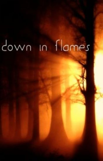 Down In Flames [On Hold]