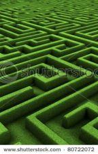 Maze by faithrobinson11
