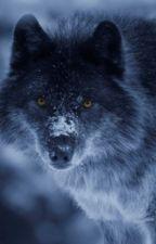 Half Wolf; Half Human by Lucylock145