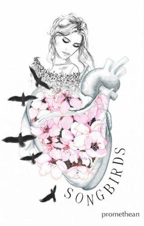Songbirds by promethean