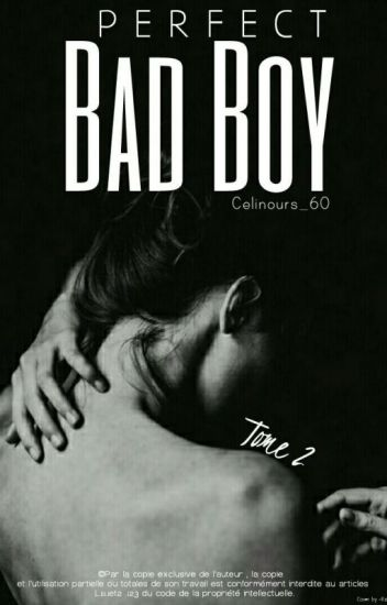 Perfect Bad Boy. TOME 2